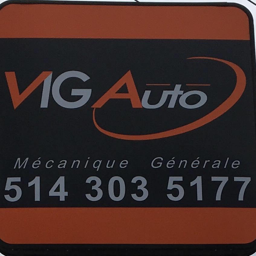 VIG AUTO INC.